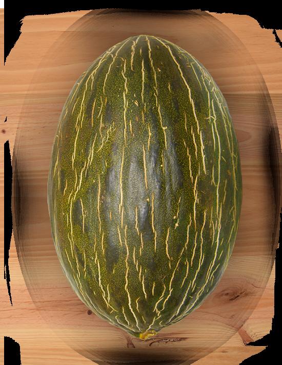 melon-manchego